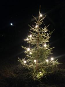 God jul. (Foto: Helene Aarnes).